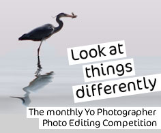 Enter the competitions on our photography forum.